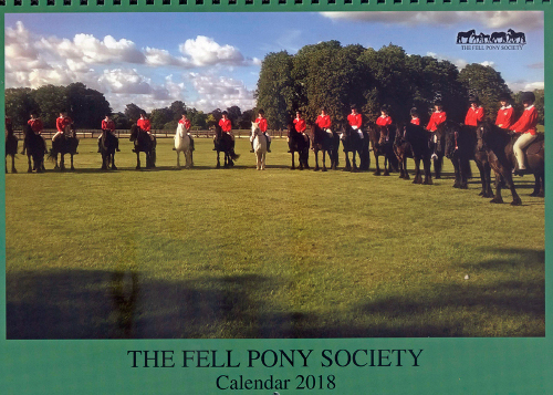 Fell pony calendar cover